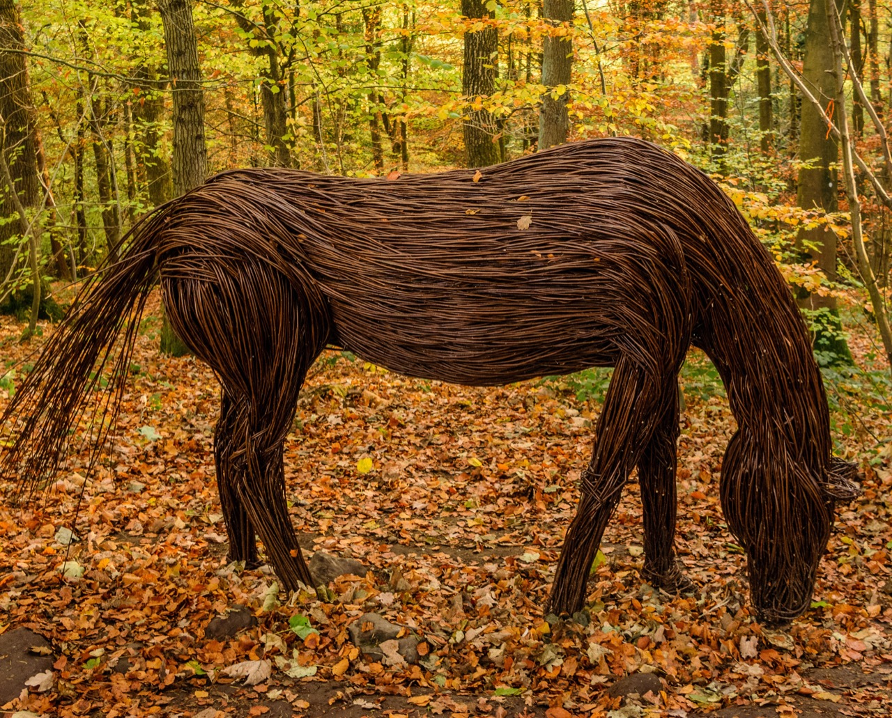 Image of Beautiful Woven Sculptures by Anna and the Willow